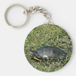 Painted Turtle Basic Round Button Key Ring
