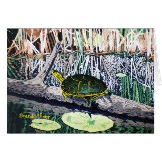 Painted Turtle Blank Card