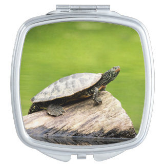 Painted Turtle on a log Compact Mirror