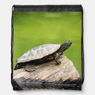 Painted Turtle on a log Drawstring Bag