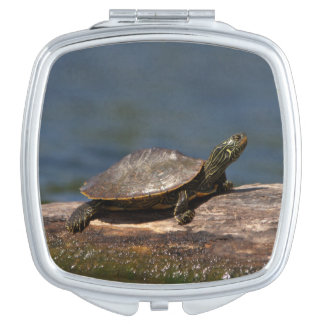 Painted turtle on a log makeup mirrors