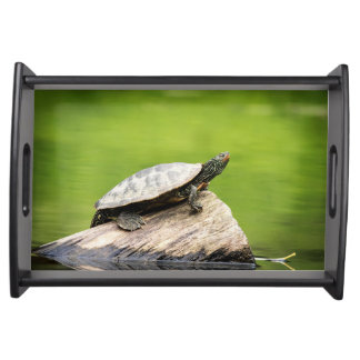 Painted Turtle on a log Serving Tray