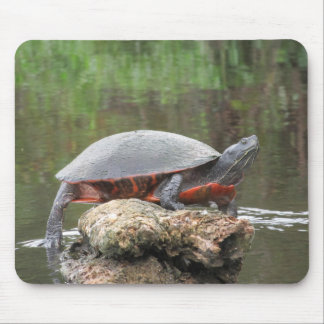 Painted Turtle Photo Mouse Pad
