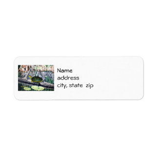 Painted Turtle Return Address Labels