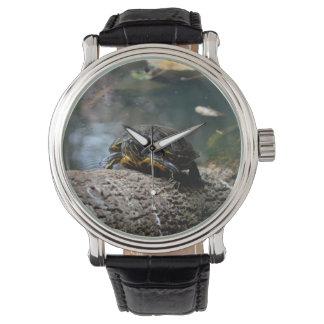 painted water turtle climbing log wristwatch