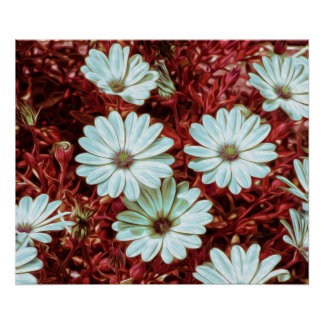 Painted White Daisie Flowers and Foliage Print Poster