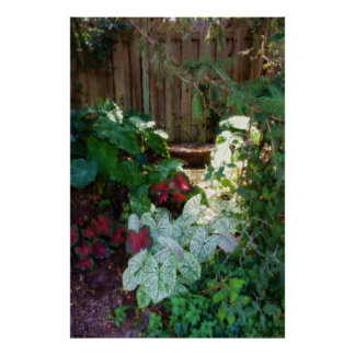 Painterly Caladiums and Old Wood Fence Poster