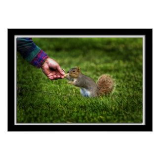 Painterly Eating Squirrel Poster