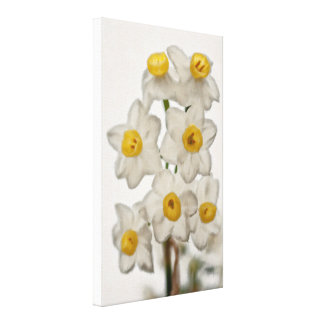 Painterly Image of Daffodil Flowers Canvas Print