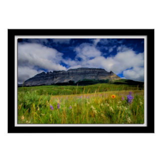 Painterly Montana Spring Flowers Poster
