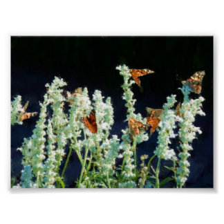 Painterly Watercolor Painted Lady Butterflies Poster