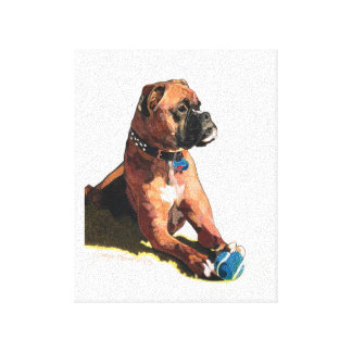 """Painting of """"Brodie the Boxer"""" Stretched Canvas Prints"""