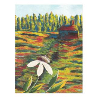 Painting of Flower Meadow & Shack Postcard