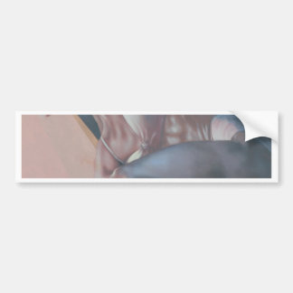 paintings bumper stickers