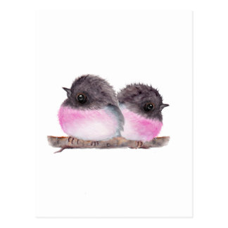 Pair of baby birds pink robins watercolor painting post card