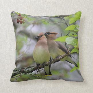 Pair of Cedar Waxwings Cushion