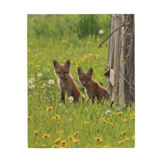 Pair of fox kits wood print