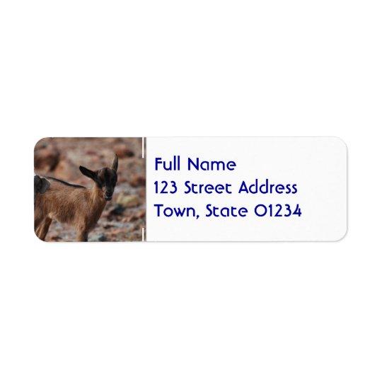 Pair of Goats Return Address Label