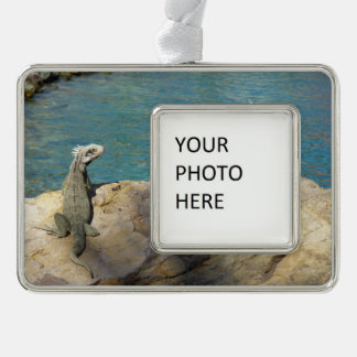 Pair of Iguanas Tropical Wildlife Photography Silver Plated Framed Ornament