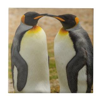 Pair of King Penguins, Falklands Tile