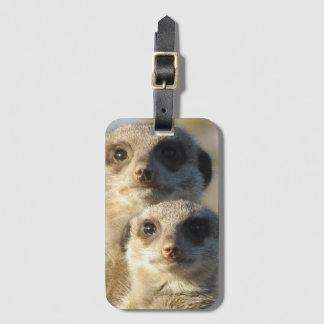 Pair of Meerkats Luggage Tag