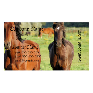Pair of Morgans Business Cards