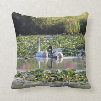 Pair of Mute Swans and cygnet Cushion