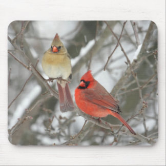 Pair Of Northern Cardinals Mouse Pad