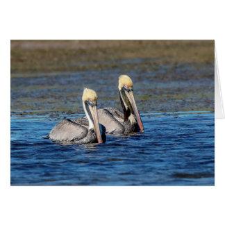 Pair of Pelicans Card