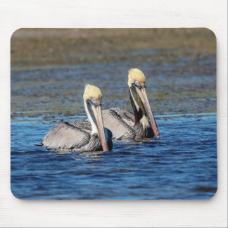 Pair of Pelicans Mouse Pad