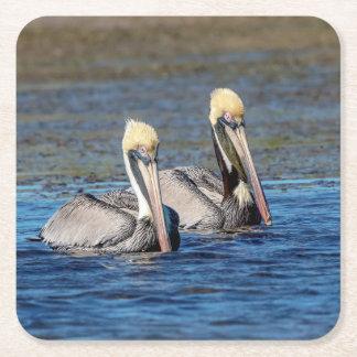 Pair of Pelicans Square Paper Coaster