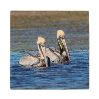 Pair of Pelicans Wood Coaster