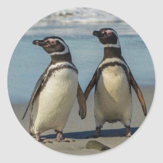 Pair of penguins on the beach classic round sticker
