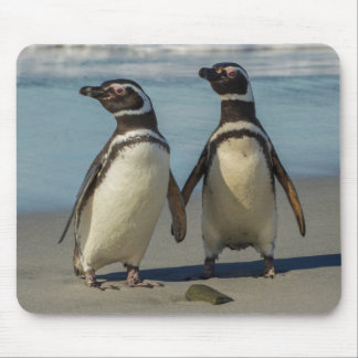 Pair of penguins on the beach mouse pad