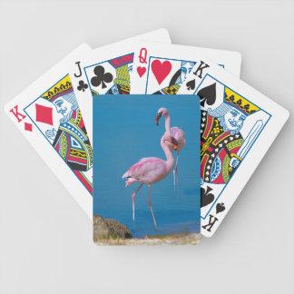 Pair of Pink Flamingos Playing Cards