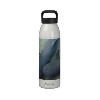 Pair of Sharks Water Bottle