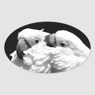Pair of umbrella cockatoos oval sticker
