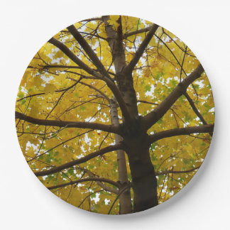 Pair of Yellow Maple Trees Autumn Nature Paper Plate