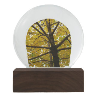 Pair of Yellow Maple Trees Autumn Nature Snow Globe