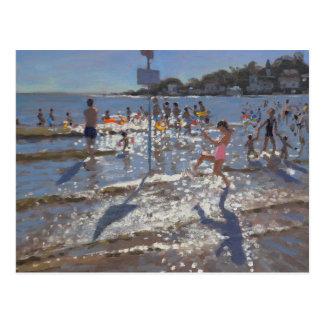 Palais Sur Mer France 2009 Postcard