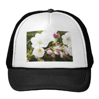 Pale Beauties Trucker Hat