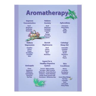 Pale Blue Aromatherapy Chart Flyer