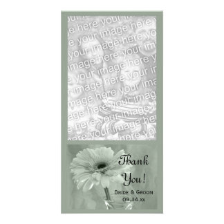 Pale Green Tinted Daisy Wedding Thank You Photo Cards