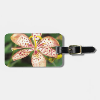 Pale orange spotted Blackberry lily Luggage Tag