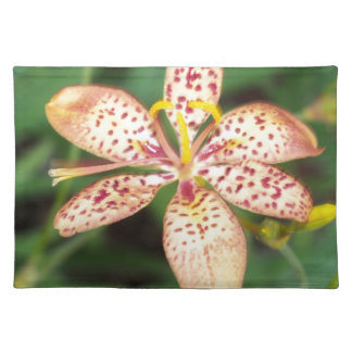 Pale orange spotted Blackberry lily Placemat