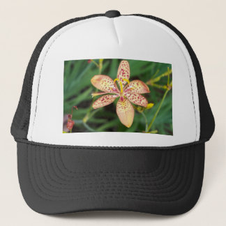 Pale orange spotted Blackberry lily Trucker Hat
