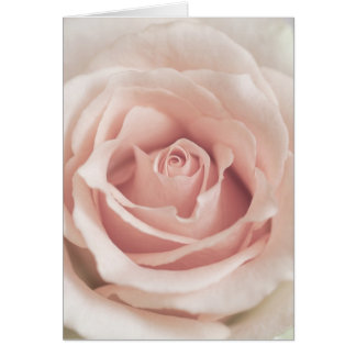 Pale Peach Antique Rose Background Customized Card