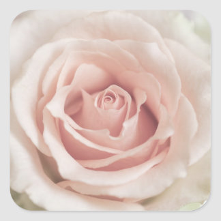 Pale Peach Antique Rose Background Customized Square Sticker