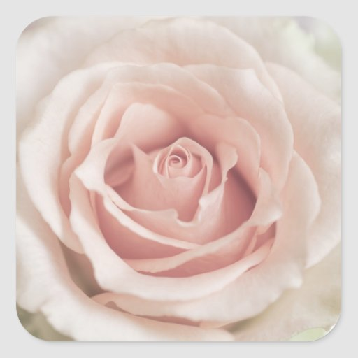 Pale Peach Antique Rose Background Customized Square Stickers