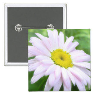 Pale Pink Painted Daisy Pinback Buttons